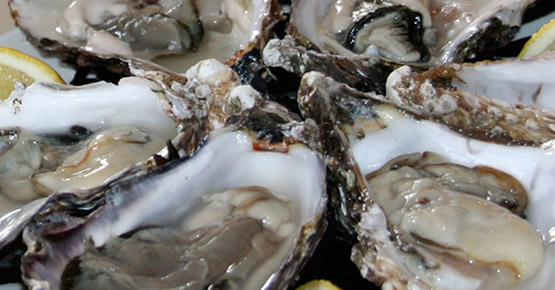 Champagne & Oyster Festival, The White Horse, Main Road, Brancaster Staithe, Marsh side pop up marquee | The White Horse 3rd Champagne & Oyster Festival, Marsh Side | Oyster Festival, Marsh Side, High Tide, Music